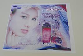 फ्लैग क्लॉथ बैनर 1.6 मीटर (5 फीट) इको सॉल्वेंट प्रिंटर WER-ES160 4 द्वारा मुद्रित