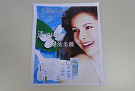 पीवीसी बैनर 3.2 मीटर (10 फीट) इको सॉल्वेंट प्रिंटर WER-ES3201 3 द्वारा मुद्रित