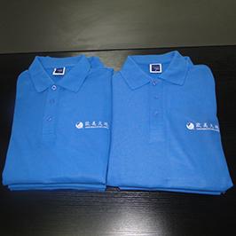 पोलो शर्ट अनुकूलित मुद्रण नमूना A3 टी-शर्ट प्रिंटर WER-E2000T द्वारा